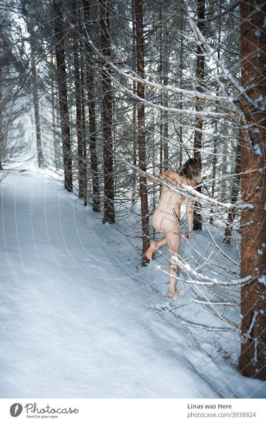 Frohes neues Jahr, Leute! Möge das neue besser werden. Ein Mädchen läuft nackt durch diese verschneiten Wälder. Es muss ein Zeichen für neue Herausforderungen und neue Möglichkeiten im nächsten Jahr sein.