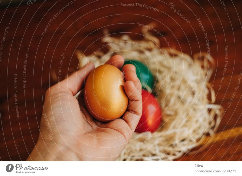 Eine Hand hält ein bemaltes Osterei, im Hintergrund ein Osternest mit weiteren bunten Ostereiern Eier Nest bunte Eier gefärbt golden gekochte Eier