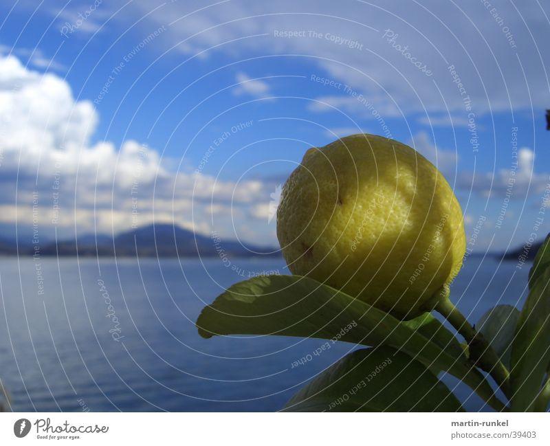 Fruits in Heaven Natur blau Wasser weiß grün Meer Blatt Wolken ruhig Erholung Ferne gelb Berge u. Gebirge Horizont Frucht groß