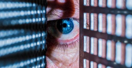Eine Person sieht mit einem Auge zwischen zwei Gittern hindurch Spalt Ritze beobachten sehen spionieren Neugier neugierig Spanner Licht Schatten entdecken