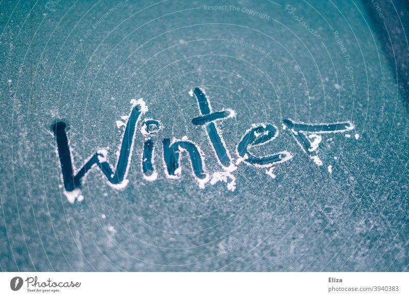 Das Wort Winter auf einer vereisten Autoscheibe geschrieben Frost Eis frei kratzen Scheibe gefroren PKW Autofenster Windschutzscheibe blau kalt freikratzen kühl