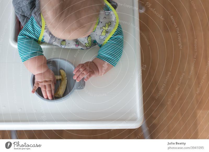 6 Monate altes Baby sitzt im Hochstuhl und greift in eine Schüssel mit Bananenstücken; babygeführte Entwöhnungsmethode erste Lebensmittel weiche Streifen