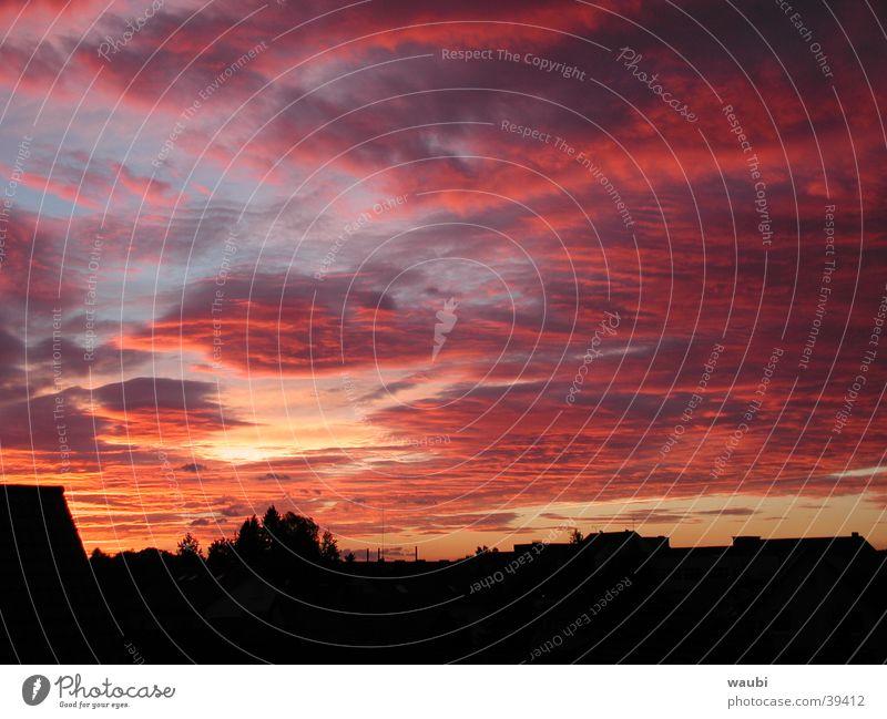 Abendrot Himmel rot Wolken außergewöhnlich Abenddämmerung beeindruckend Naturphänomene Abendsonne Wolkenhimmel Wolkendecke Wolkenfeld Wolkenbild leuchtende Farben Roter Himmel