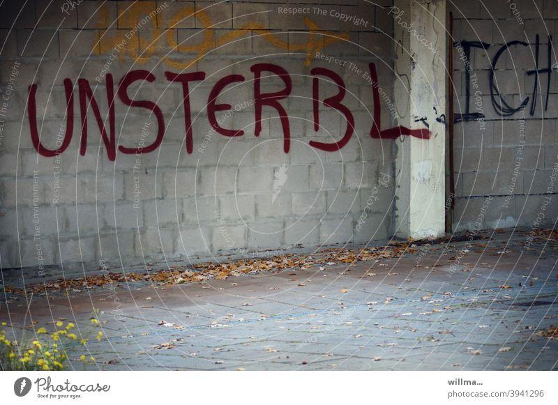 und plötzlich ist man nicht mehr unsterblich. Graffiti Wand Mauer Unsterblichkeit Leben Seele unvergänglich unbegrenzt Schriftzeichen Wort Buchstaben Text