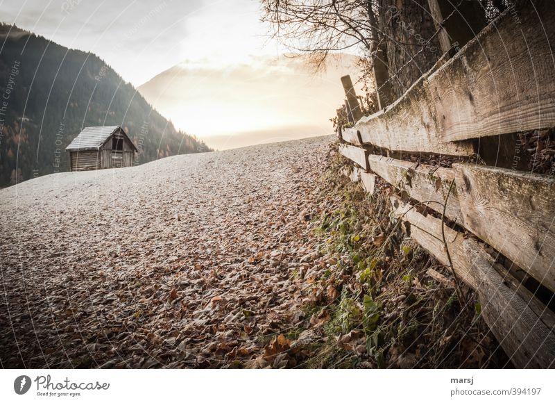 Frostalarm! Himmel Natur Landschaft Haus Winter kalt Berge u. Gebirge Wiese Herbst Frühling Holz braun Eis Wetter Klima leuchten