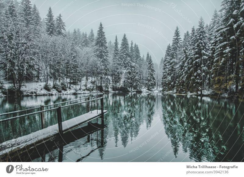 Winterlandschaft im Thüringer Wald Pfanntalsteich Oberhof Thüringen See Wasser Schnee Steg Bäume Geländer Spiegelungen Reflexion & Spiegelung Natur Landschaft