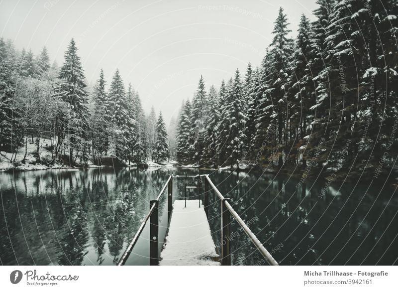 Waldsee im Winterkleid Pfanntalsteich Oberhof Thüringen Thüringer Wald See Wasser Schnee Steg Bäume Geländer Spiegelungen Reflexion & Spiegelung Natur