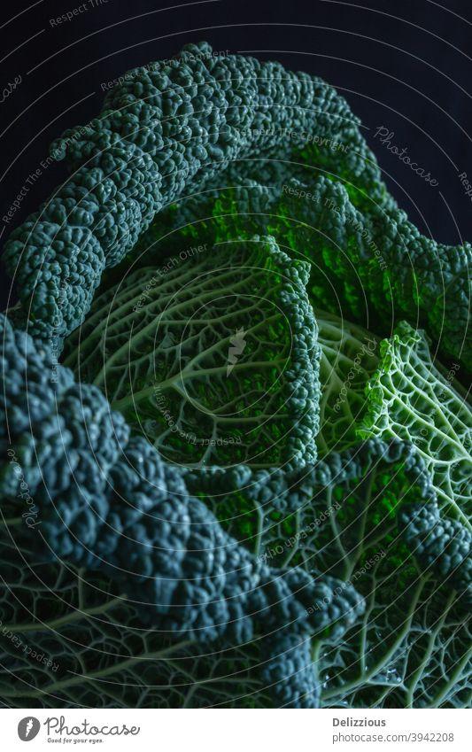Schöne Wirsing Nahaufnahme auf schwarzem Hintergrund abstrakt Ackerbau hübsch schwarzer Hintergrund Kohlgewächse bunt Essen zubereiten Diät Lebensmittel