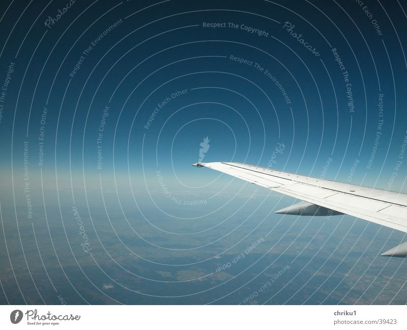 Fliegerflügel Flugzeug Tragfläche Horizont Ferien & Urlaub & Reisen Verkehrsmittel unterwegs Schwerelosigkeit Schönes Wetter Luftverkehr Himmel blau Erde Niveau