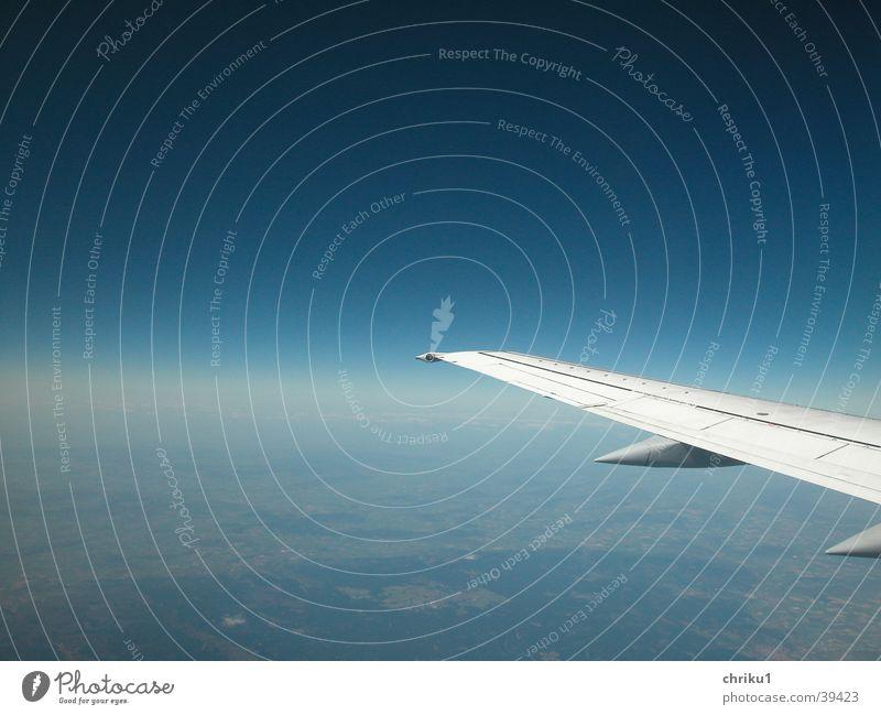 Fliegerflügel Himmel blau Ferien & Urlaub & Reisen Flugzeug Horizont Erde Luftverkehr Niveau Tragfläche Schönes Wetter unterwegs Verkehrsmittel Schwerelosigkeit