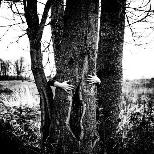 leicht öffnen Baum Hände menschlich Finger schwarz auf weiß Monochrom stechend rau Tanzen Symbolismus symbolische Kraft Symbole & Metaphern Landschaft posierend