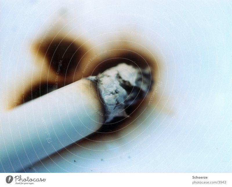 Zigarette auf Papier Dinge Brandloch Suche Rauchen