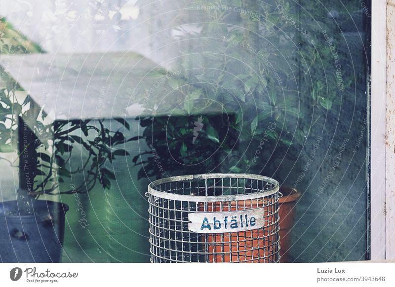 !Trash! 2020  Blick durch das Fenster eines leeren Ausstellungsraums, Spiegelungen und immergrüne Topfpflanzen Schaufenster Abfall Abfalleimer