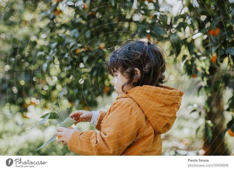 Kleines Mädchen hält Orange orange Orangensaft Zitrusfrüchte Kind Kindheit authentisch Natur natürlich Vitamin Farbfoto Gesunde Ernährung Vitamin C frisch
