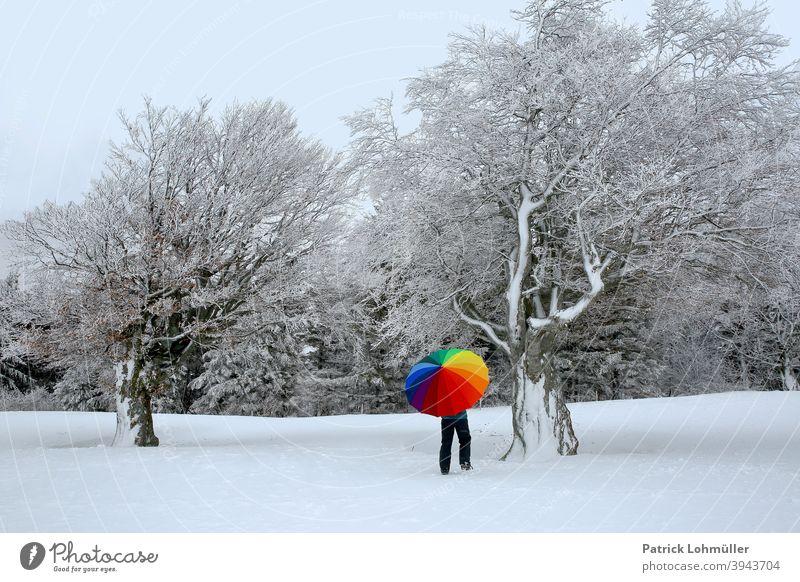 Winteranstrich winter schnee regenschirm weißkalt frau windbuchen schneebedeckt jahreszeit eisig bunt farblos farbenfroh regenbogen winterspaziergang kunst kahl