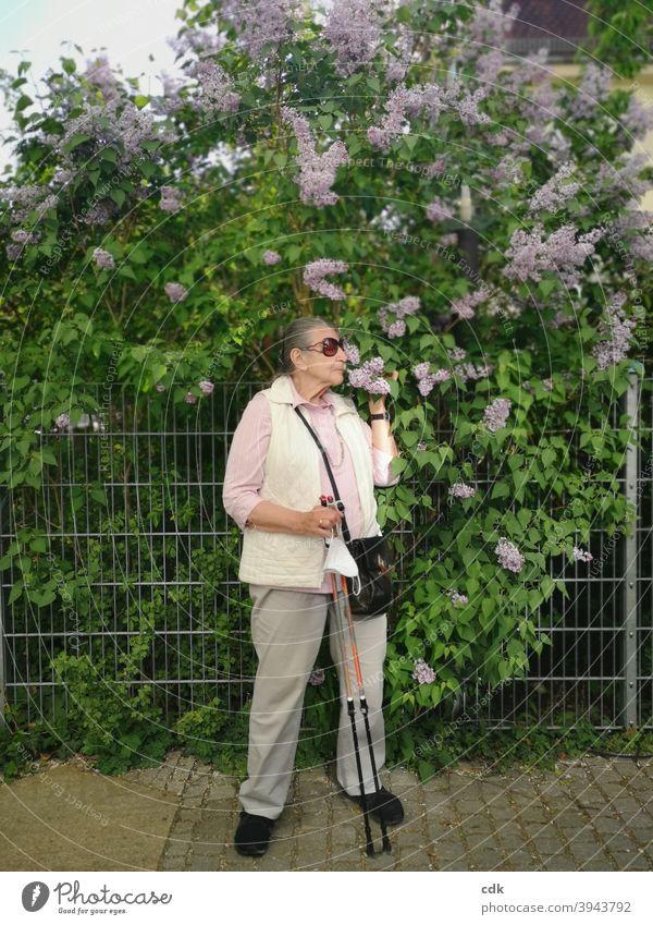 Fliederduft Mensch Frau Person Seniorin stehend Walking-Stöcke Mund-Nasen-Schutz Maske in der Hand Fliederbusch riechen duften Frühling draußen blühen genießen