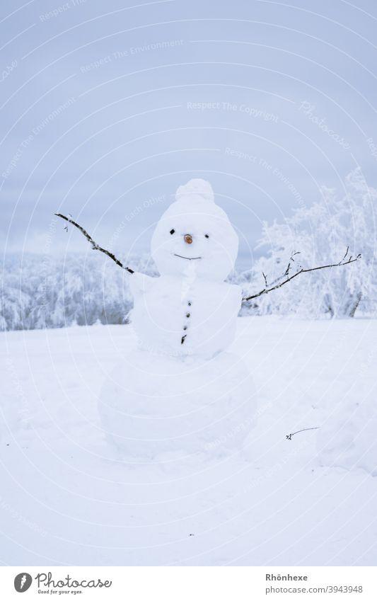 Olaf der kleine Schneemann steht auf der Wiese Winter Außenaufnahme kalt Spielen weiß Freude Natur Jahreszeiten Lächeln Kindheit Fröhlichkeit Schneebälle
