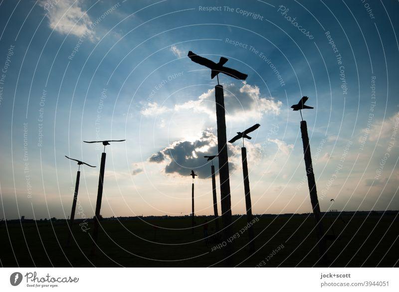 Illusion von fliegenden Vögeln auf Pfählen Holzpfahl mehrere Skulptur Gegenlicht Abenddämmerung Himmel Wolken Silhouette Sonnenlicht tempelhofer feld