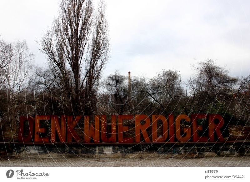 Denkwürdiger Ort Baum Winter Berlin obskur karg