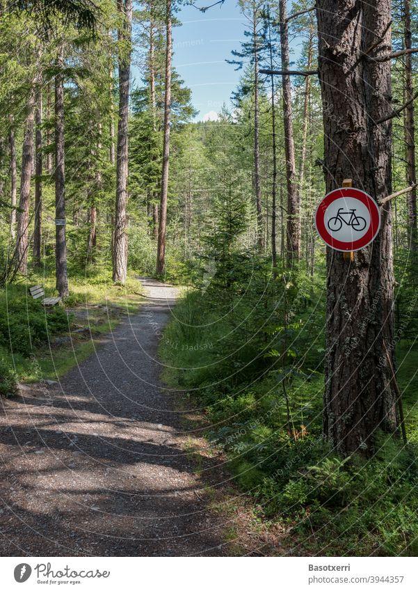 Fahrradverbotsschild auf einem schmalen Weg im Wald MTB Mountainbike mountain bike Berg Pfad Wege & Pfade eng niemand Menschenleer Wanderer Konflikt Ärger