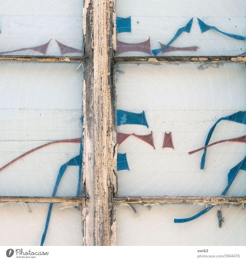 Überbleibsel Fenster Holz Glas Kunststoff Totale Menschenleer Strukturen & Formen Detailaufnahme Außenaufnahme lost places verfallen Farbfoto Gedeckte Farben