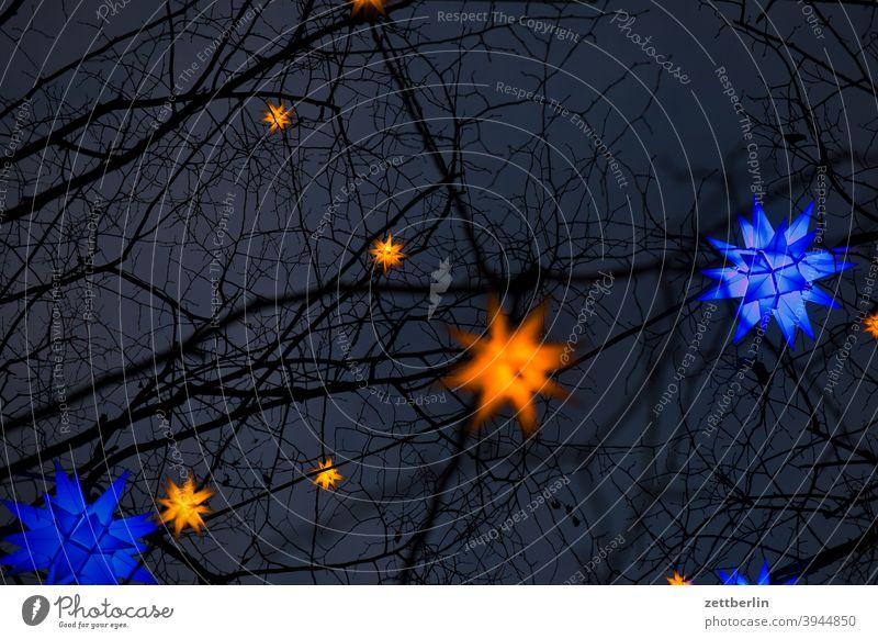 Sternenhimmel abend abends ast baum deko dekoration dunkel dunkelheit illumination nacht nachts stern sternenhimmel weihnachtsstern zweig advent sternbild