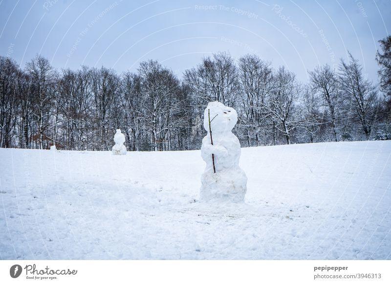 Schneemann, der wie ein einsamer Soldat dort steht Einsamkeit Winter kalt weiß Außenaufnahme Freude Spielen Natur Jahreszeiten Weihnachten Glück