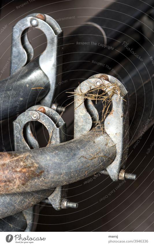 Alles fest im Griff, sprach die Rohrschelle und hielt das Eisenrohr fest. Metall Klammer schmutzig Verbindungstechnik klammern Bogen Industrie verzinkt