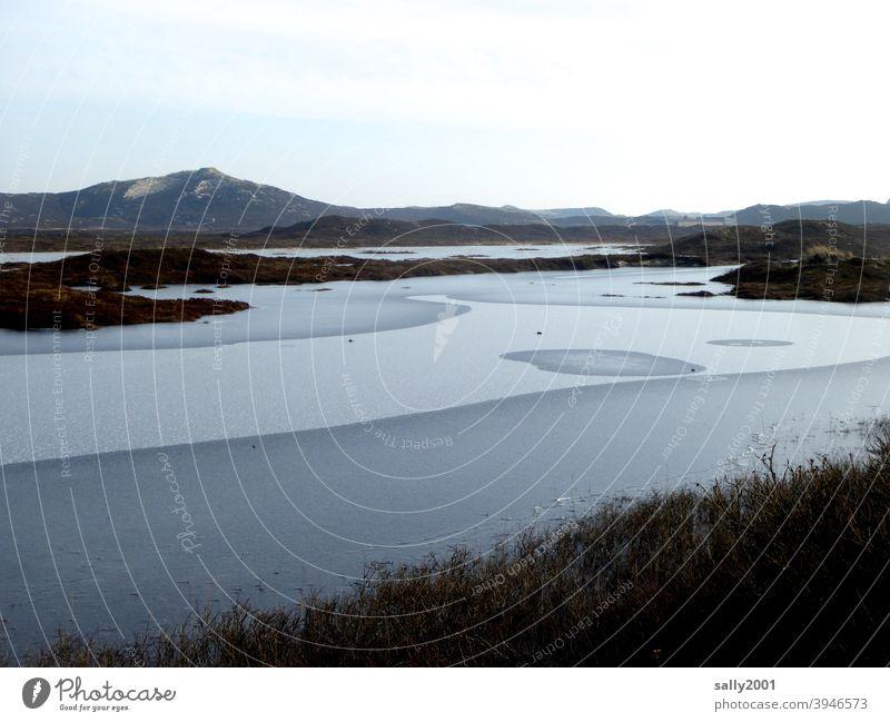gefrorener See in den Dünen Teich Winter zugefroren kalt Dünenlandschaft Sylt Eis eiskalt Eisfläche Fläche zufrieren winterlich Ruhe ruhig Erstarrung erstarrt