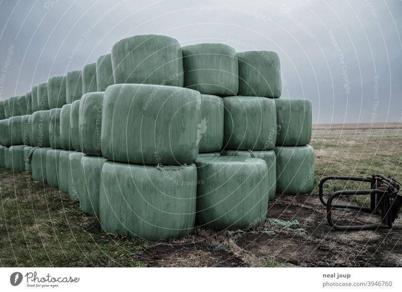 In grüner Folie verpackte Heuballen gestapelt auf einer Wiese Natur Landwirtschaft Futter Vorrat Gras Verpackung PVC Kunststoff Plastik Außenaufnahme