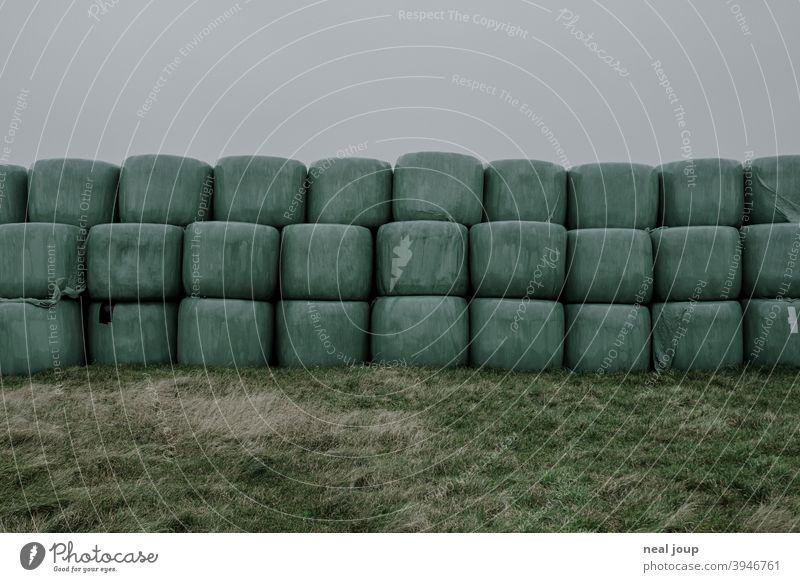 In grüner Folie verpackte Heuballen horizontal gestapelt auf einer Wiese Natur Landwirtschaft Futter Vorrat Gras Verpackung PVC Kunststoff Plastik Außenaufnahme