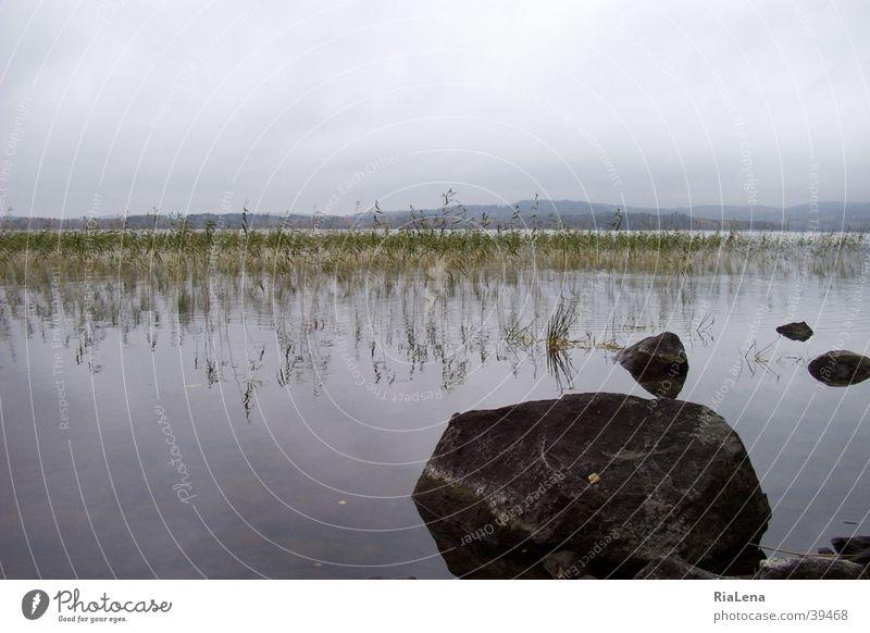 Muuratsalo Natur Stein See Landschaft Finnland Skandinavien