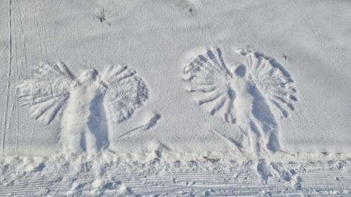 Schnee-Engel Schnee-Engerl Flügel Winter weiß Abdrücke Märchenstunde Kindheitserinnerung Erinnerung verspielt Symmetrie Schneedecke ausflug Bewegung Gefühle