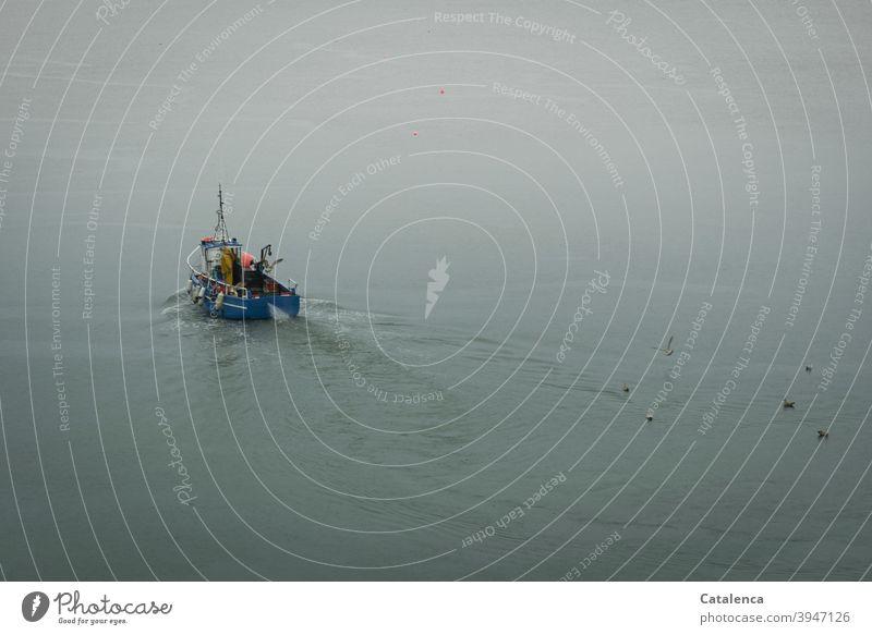 Ein Fischerboot fährt am frühen Herbstmorgen hinaus auf See Natur fahren auslaufen Meer fischen Wasser kalt Wasserfahrzeug Fishereiwirtschaft Möwen schwimmen