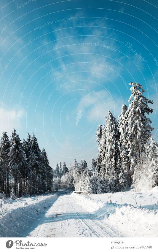 Winterstraße im tief verschneiten Wald Schnee Baum Landschaft Raureif kalt Himmel Frost blau gefroren Blick nach vorn Zentralperspektive Licht Menschenleer