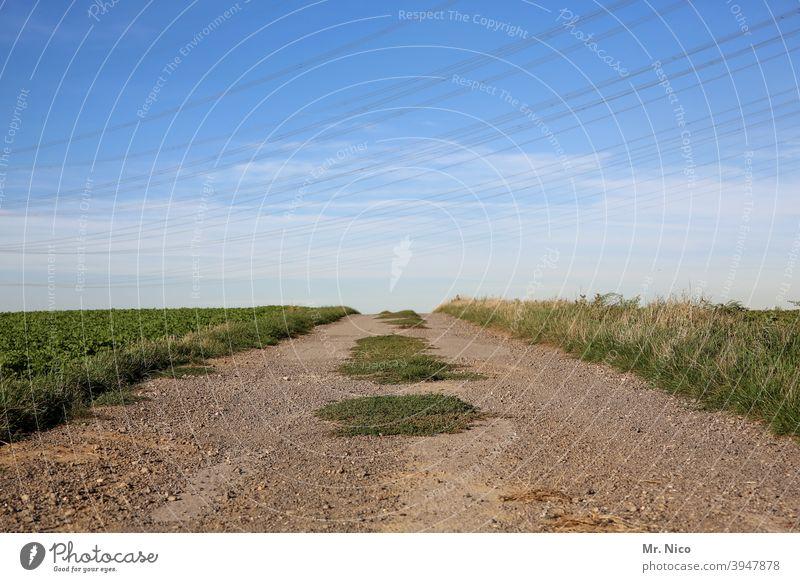 Feldweg Landschaft Umwelt Wege & Pfade Wolken Himmel Natur grün Horizont Idylle natürlich Stille Ruhe ländlich Spaziergang wandern endlos weite Schotterweg Gras