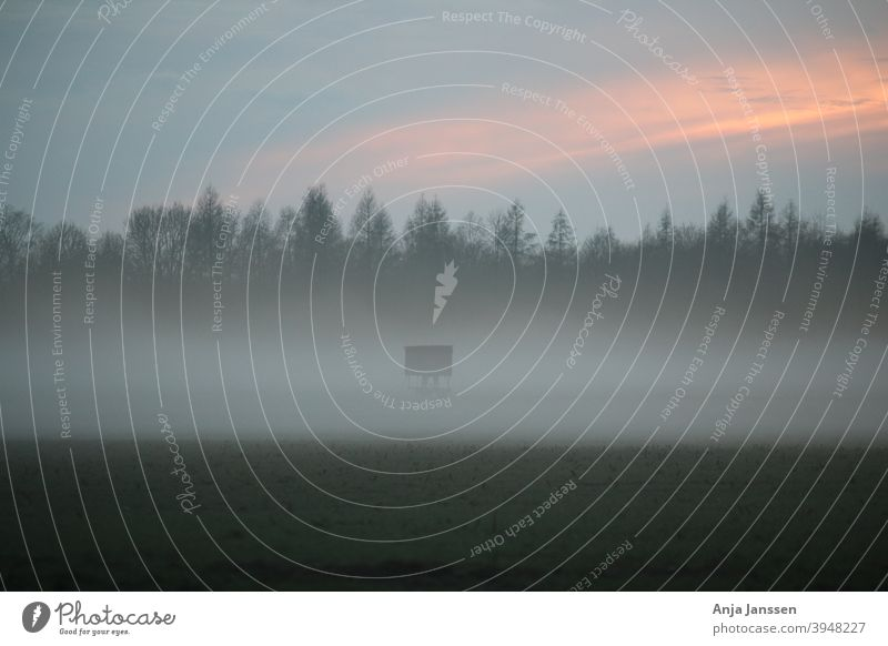 Landschaft am Abend mit Nebel und Sonnenuntergang Winter Herbst neblig Himmel wunderschön Wolken Cloud wolkig Natur außerhalb im Freien Jägerhochsitz blau grün