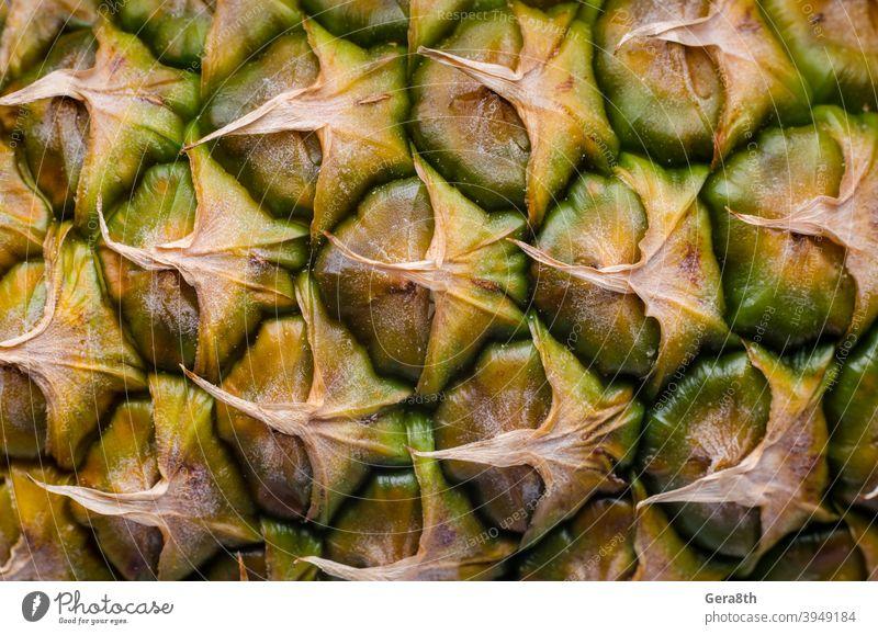 Schale einer reifen Ananas Makro-Nahaufnahme Hintergrund leere Vorlage detailliert exotisch Exotische Früchte Lebensmittel Frucht Ananas-Muster Ananasschale