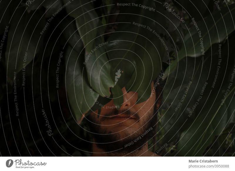 Dramatische konzeptionelle Porträt eines Mannes halb versteckt unter dunkelgrünen tropischen Blättern dramatisches Porträt Kaukasier tropische Blätter