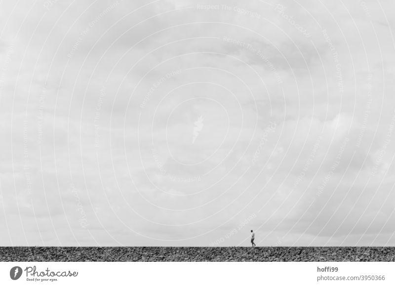 ein einsamer Wanderer im Wattenmeer Mensch Ebbe Strand Wege & Pfade Nordsee Einsamkeit Küste Silhouette Horizont Winter gehen alleine Wattwandern