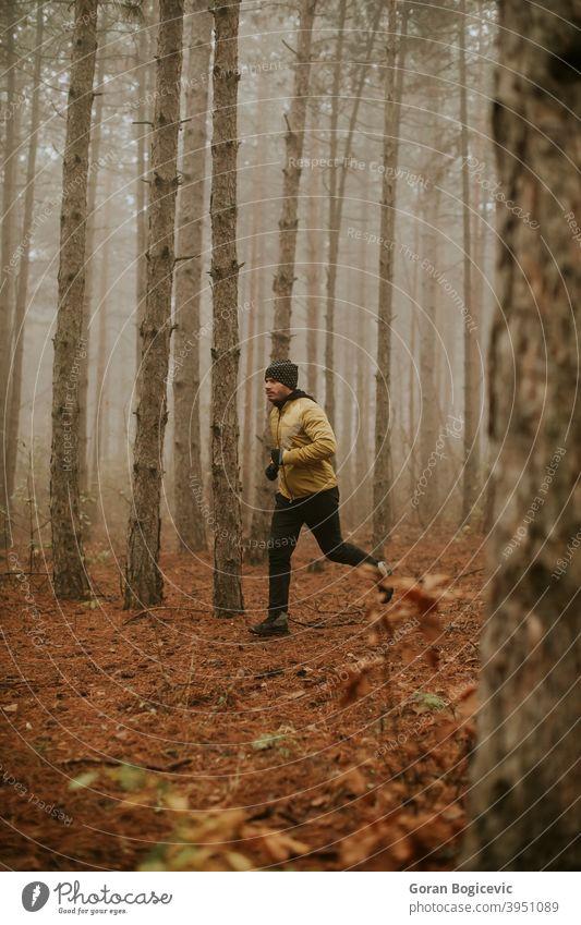 Junger Mann läuft im Herbst Wald und übt für Trail Run Marathon Ausdauerrennen Fitness Läufer männlich Joggen Übung Natur Menschen Jogger Nachlauf Athlet Person