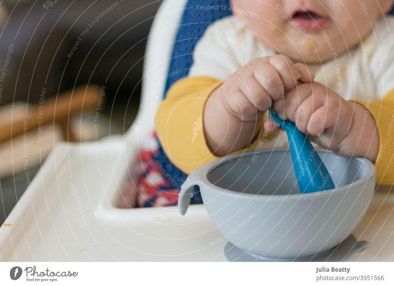 6 Monate altes Baby im Hochstuhl, das bei der Selbstfütterung mit zwei Händen nach dem Löffel greift babygeführte Entwöhnung erste Lebensmittel Apfel Apfelmus