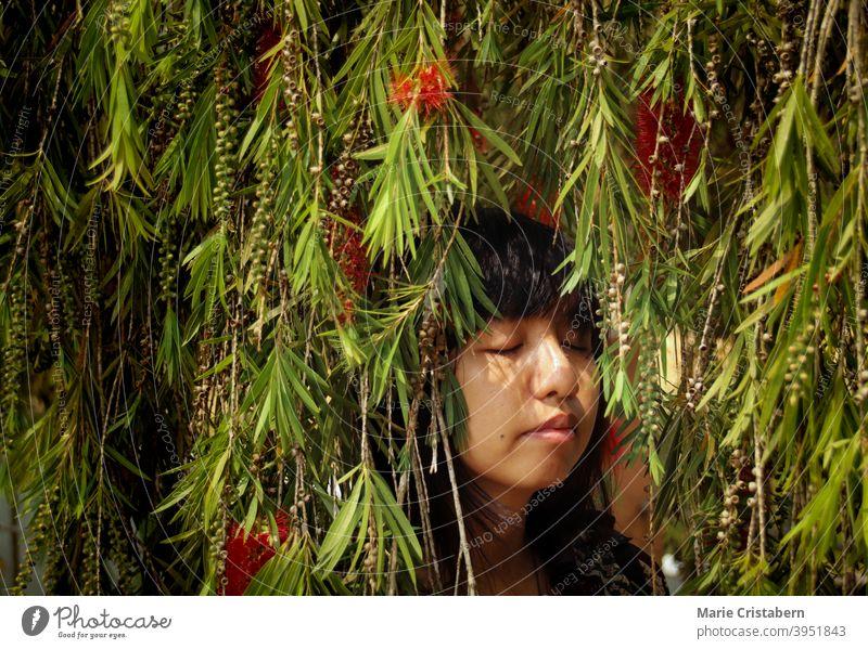 Asiatisches Mädchen entspannt sich unter den Blättern des Bottlebrush-Baums Sommer Frühlingszeit Konzeptionelles Porträt Augen geschlossen asiatisches Mädchen