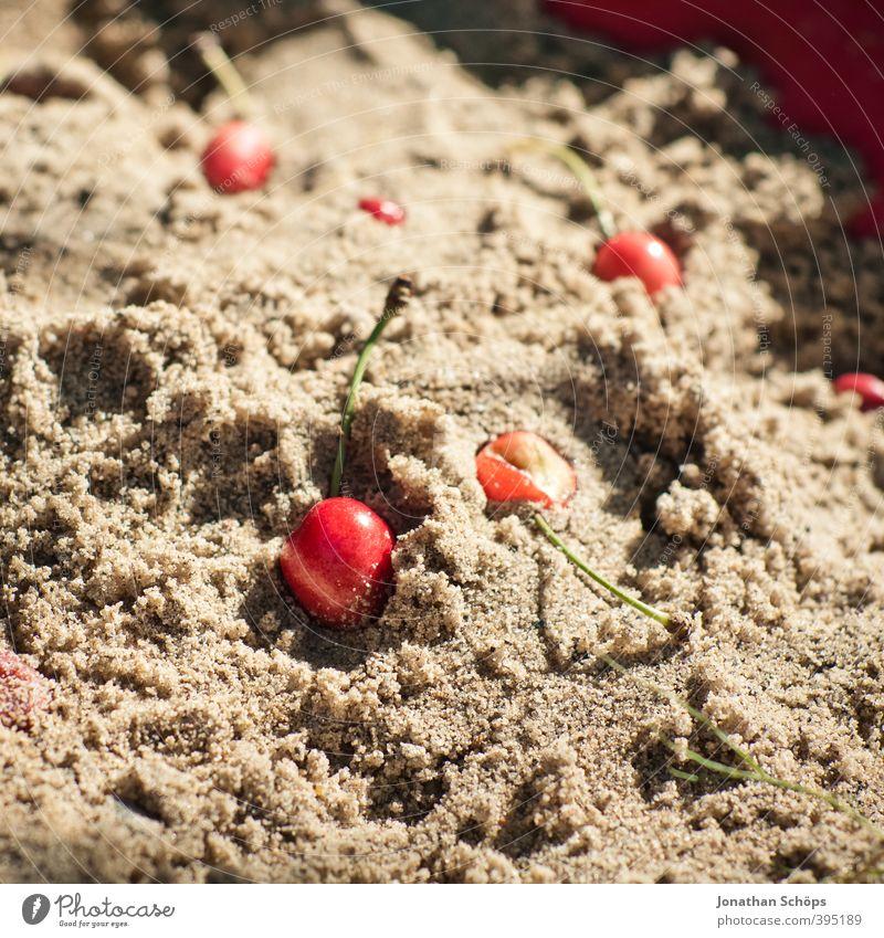 Sandkirschen Natur Sonne rot Umwelt Gesunde Ernährung Sand Gesundheit Garten Frucht Schönes Wetter Foodfotografie lecker Bioprodukte Kirsche Sandkasten