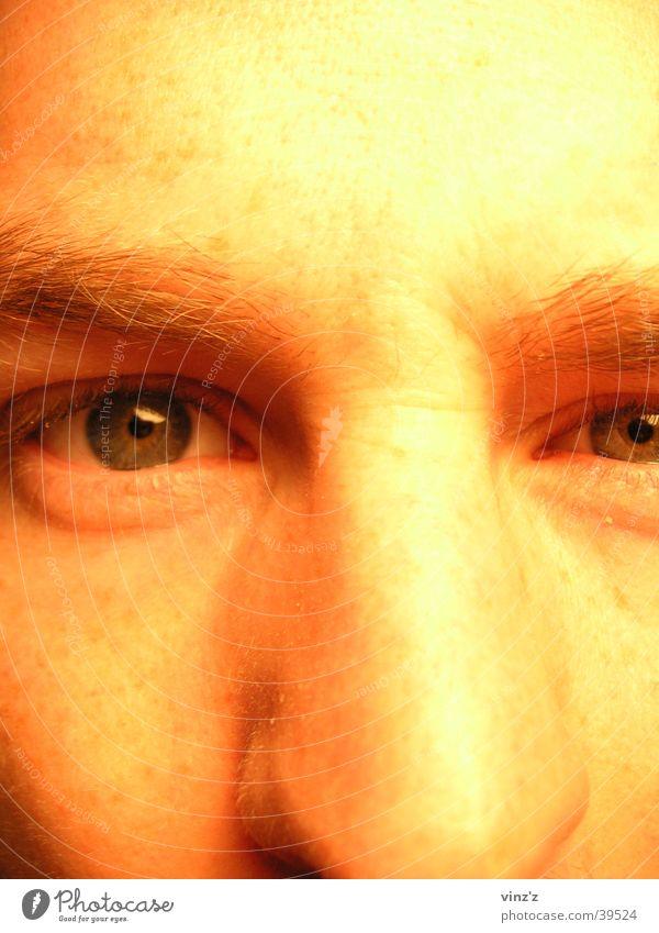 Schau mir in das Auge Mann Gesicht Nase nah Augenbraue