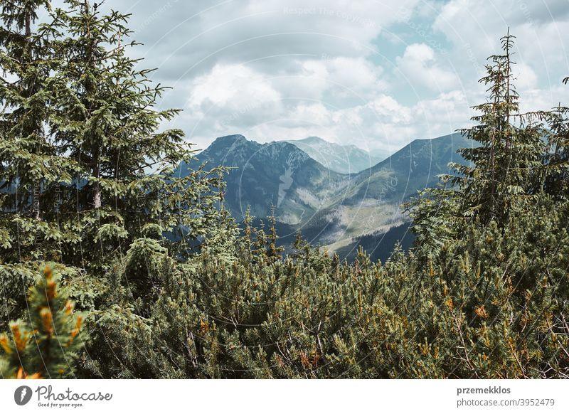 Tatra Gebirge Landschaft. Scenic Blick auf Berg felsigen Gipfeln, Hängen, Hügeln und Tälern erstaunlich im Freien niemand Urlaub Weg Tourismus Bäume Felsen Top