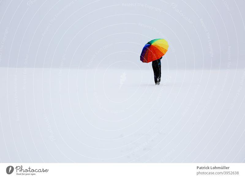 Irgendwo im Nirgendwo schauinsland freiburg frau alleine einsam winter schnee weite weg bunt regenschirm farbig gehen kalt spazieren unduchsichtig weiß eisig