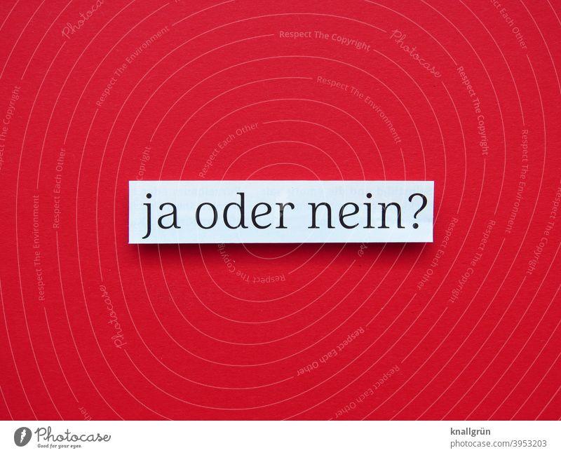 Ja oder nein? Zweifel unsicher ja oder nein Entscheidung wählen Demokratie Erwartung nachdenken entscheiden unentschlossen Typographie Buchstaben Wort Letter