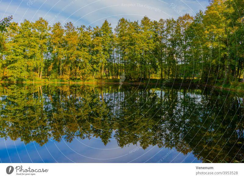 Kleiner See im Herbst kleiner See Seen Wasser Himmel Cloud Wolken Ufer Meeresküste Reflexion & Spiegelung Wasserspiegelung Bäume Natur Deutschland außerhalb