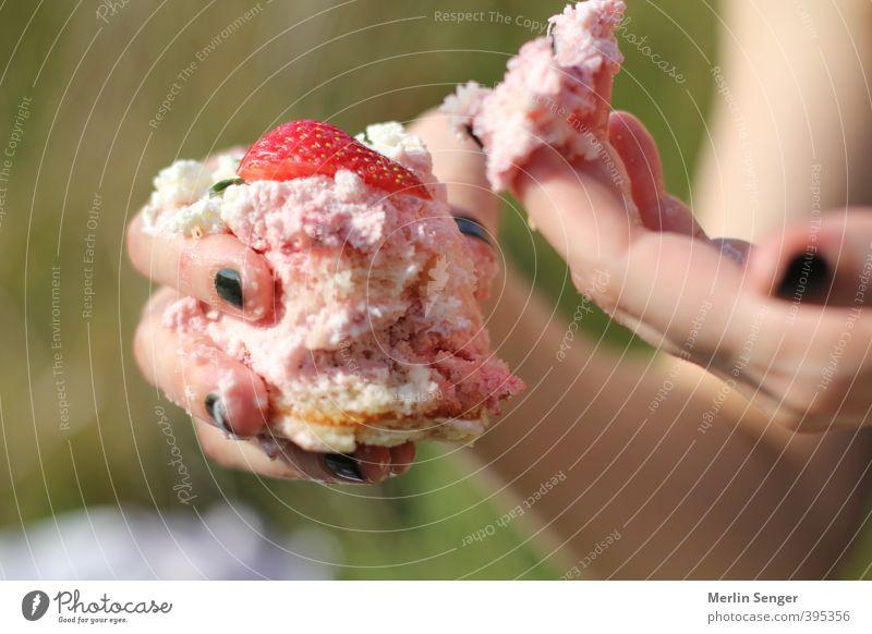 Erdbeertorte Jugendliche grün Hand Junge Frau Erwachsene 18-30 Jahre Leben Erotik feminin Gesunde Ernährung Essen träumen rosa Idylle Sex Übergewicht